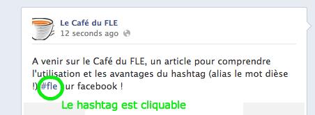 hashtag-fle