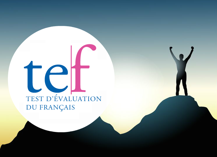 tef-test-evaluation-francais-preparation